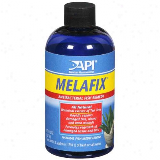 Api Aquarium Pharmaceuticals: Melafix Antibacterial Fish Remedy, 8 Fl Oz