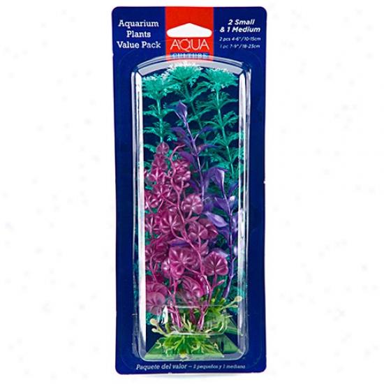 Asua Culture Aquarium Plants Value Pack, 3 Count