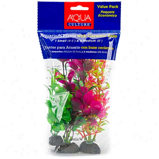 Aqua Culturre Aquarium Plants With Ceramic Base, 3 Calculate