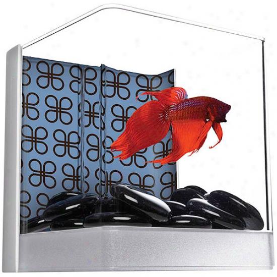 Aqua Culture Betta Cube Aquarium Kit, .3 aGl