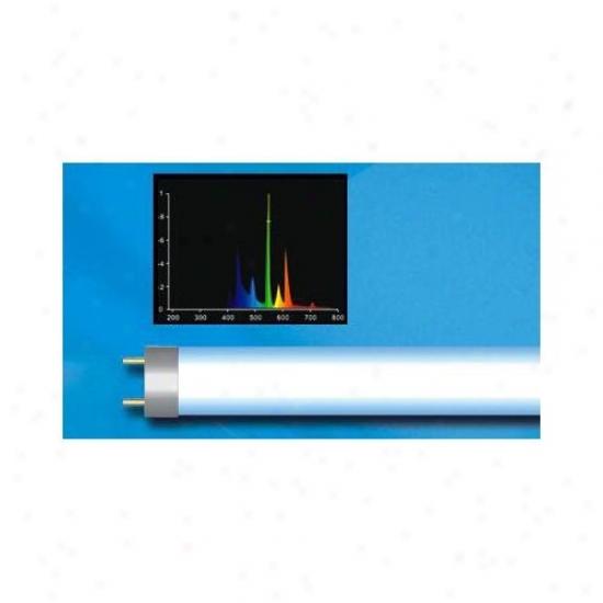 Aqua Euro Usa T5 54w Ho 10,000k Super Bulb In White