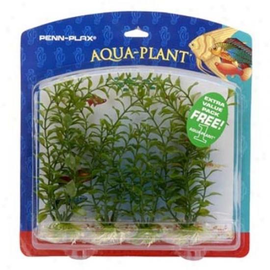 Aqua Plants Family Value Pack Aquarium Plants