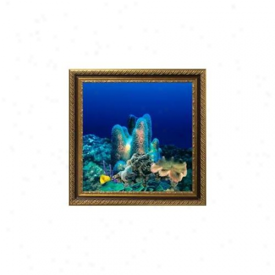 Aquavista Av500crbali Wall-mounted Aquarium Av 500 Coral Reef Background With Libraa Frame