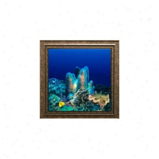 Aquavixta Av500crbasc Wall-mounted Aquarium Av 500 Coral Reef Background With Scorpio Frame