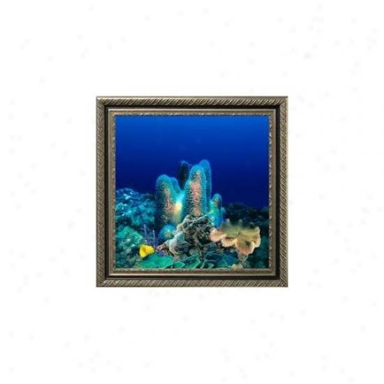 Aquavista Av500crbavi Wall-mounted Aquarium Av 500 Coral Reef Background With Virgo Frame