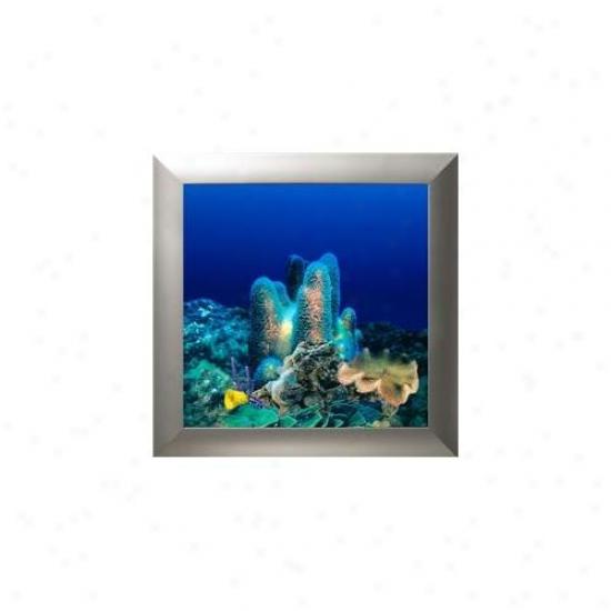 Aquavista Av500crsl Wall-mounted Aquaruum Av 500 Coral Reef Background With Silver Frame