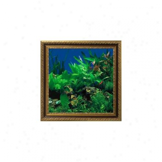Aquavista Av500sbali Wall-mounted Aquarium Av 500 Seaweed Backgrouund With Libra Frame