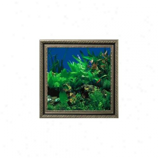 Aquavista Av500sbavi Wall-mounted Aquarium Av 500 Seaweed Background With Virgo Frame