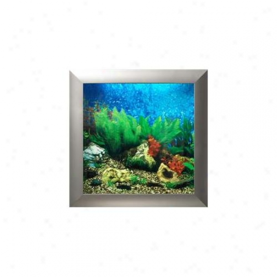 Aquavista Av500tasl Wall-mounted Aquarium Av 500 Tropical Water Background With Silver Frame