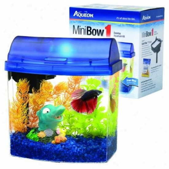 Aqueon Glass 01204 Mini Bow Desktop Aquarium Kit