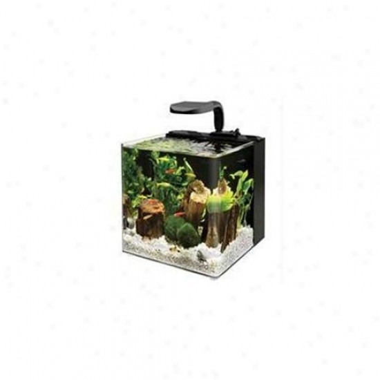 Aqueon Glass - Evolve Aquarium 4 Gallon - 17101
