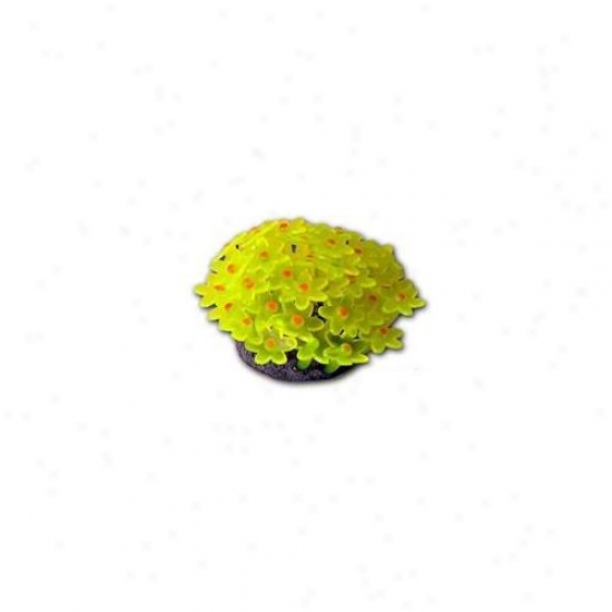 Azoo Az27158 Artificial Coral Tubastrea - Yellow