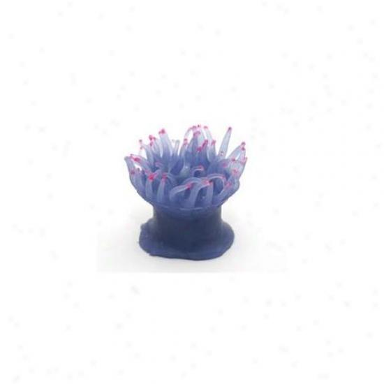 Azoo Az27206 Artificial Coral Anemonia - Blue