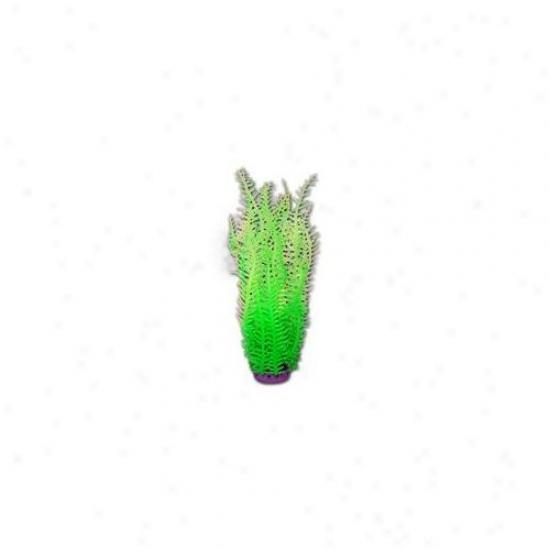 Azoo Az27218 Artficial Coral Eucheuma - Green