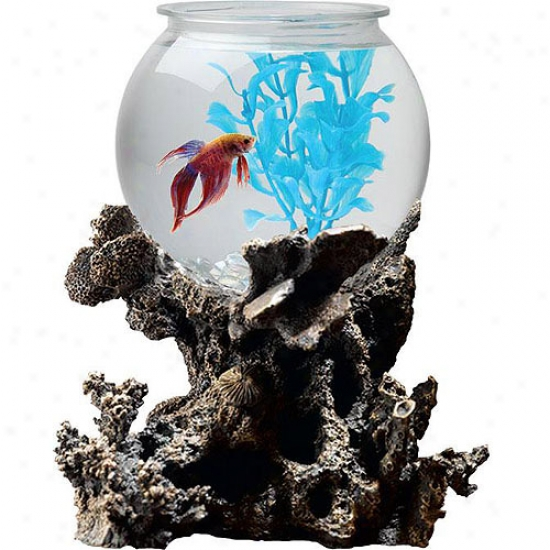 Betta Treasures 1 Gallon Bowl With Stand