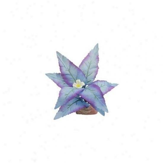 Blue Ribbon Pet Products Ablcb110bl Engender - Flowering Broad Leaf Cluster Mini Blue