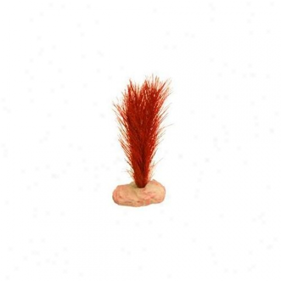 Blue Ribbon Pet Products Ablcb116rd Plant - Soft Foxtail Mini Flame Red