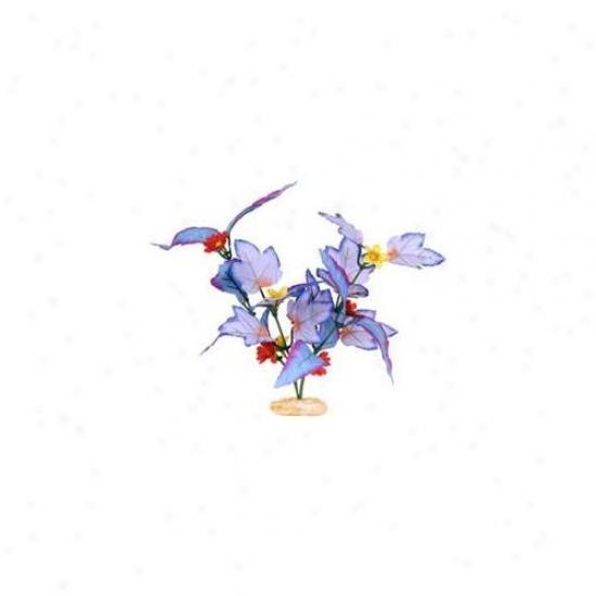 Blue Ribbon Pet Produts Ablcb210bl Plant Flowering Broad Leaf Cluster Small Blue
