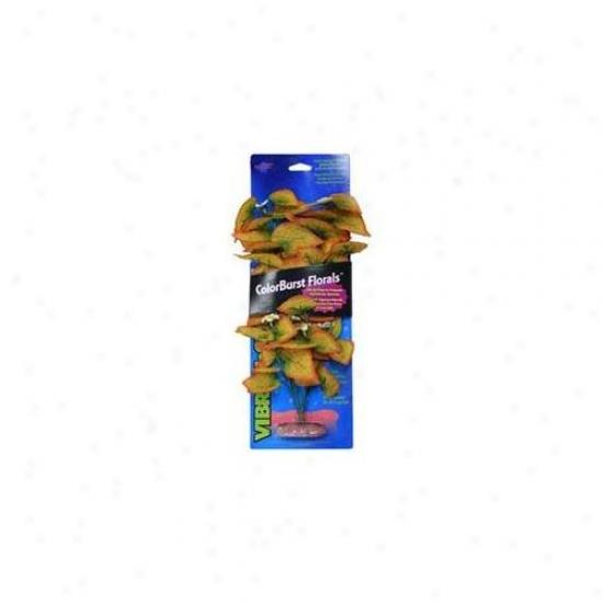 Blue Ribbon Pet Products Ablcb300or Medium Plant - Flowering Marsh Wood - Burnt Orange
