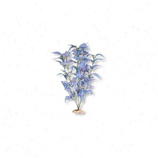Blue Ribbon Pet Prpducts Ablcb410bl Flowering Broad Leaf Cluster- Blue