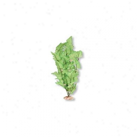 Blue Ribbon Pet Products Ablcb506gr Plant - Funtain Fern Through  Buds X-large Green