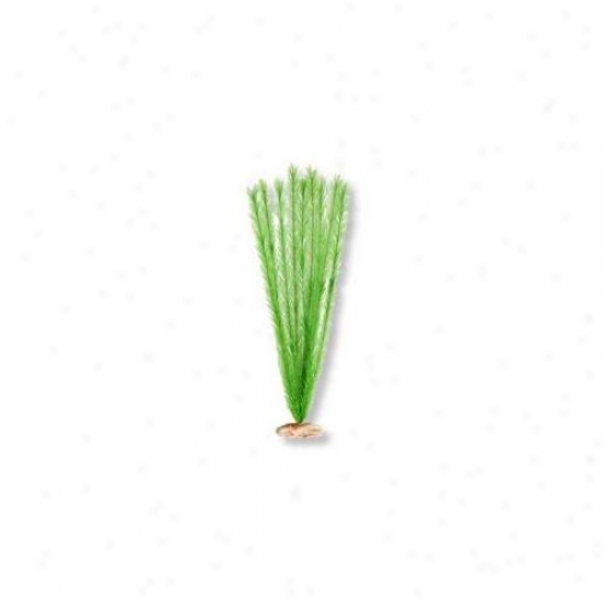 Boue Ribbon Pet Products Ablcb515gr Plant - Soft Foxtail X-large Emrald Green