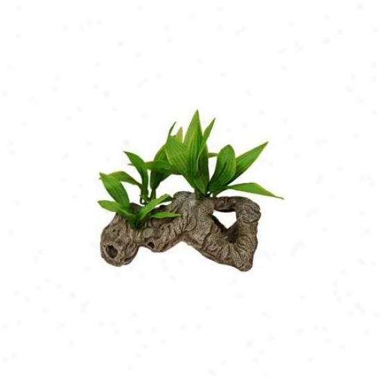 Azure Ribbon Pet Products Ablew1000 Resin Decorate - Rock Tunnels With Silk Plants-a
