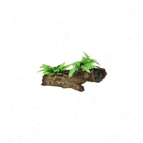 Blue Ribbon Angry mood Products Ablee1002 Resin Ornament - Large Mopani Wood With Silk Plants