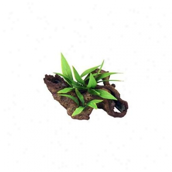 Blue Ribbon Pet Products Ablee1008 Resin Ornament - Small Mopani Wood With Silk Plants