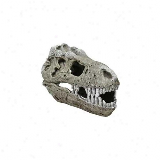 Blue Ribbon Pet Products Ablee343 Resin Ornament - Large T-rex Skull