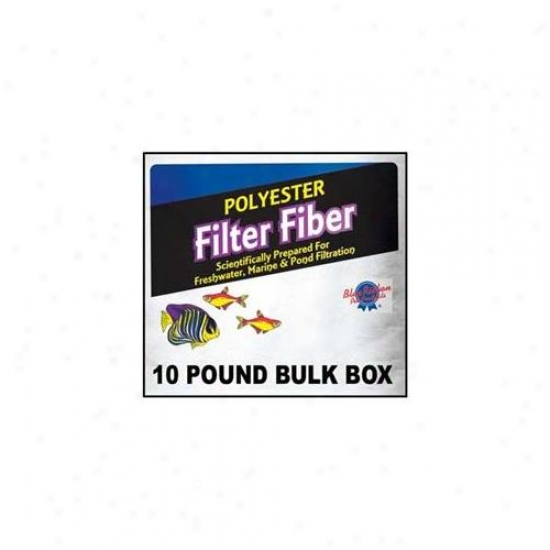 Blue Ribbon Favorite Products Ablply10 Polyester Filter Fiber 10lb Magnitude Box