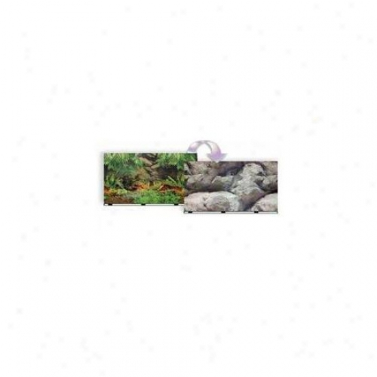 Blue Ribbon Pet Products Ablvsb1119 Background 19 Inch X 50 Ft.  Rainforest-boulder