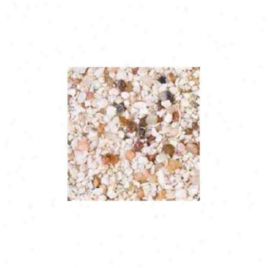 Carib Sea Acs00253 African Ivory Coast Sand 50lb Bag