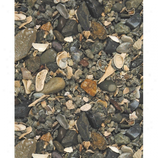 Caribsea Eco-complete Cichlids Gravel (40 Lbs) (set Of 2)