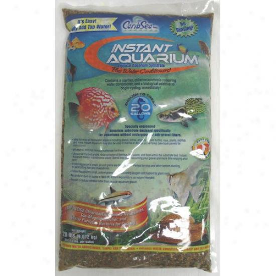 Caribsea Instant Aquarium Multi Colored Peace River Sand (40 Lbs) (set Of 2)