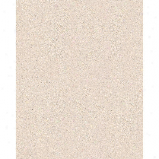Caribsea Reptioite Sand In Natural White (40 Lbs) (set Of 2)