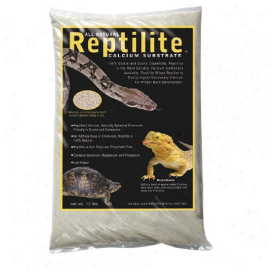 Caribsea Reptilite Sand In Natural White (40 Lbs) (set Of 4)