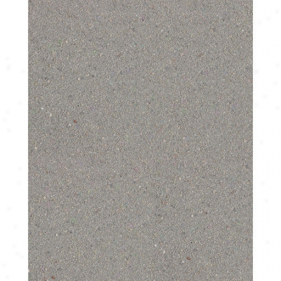 Caribsea Reptilite Sand In Smokey (40 Lbs) (set Of 4)