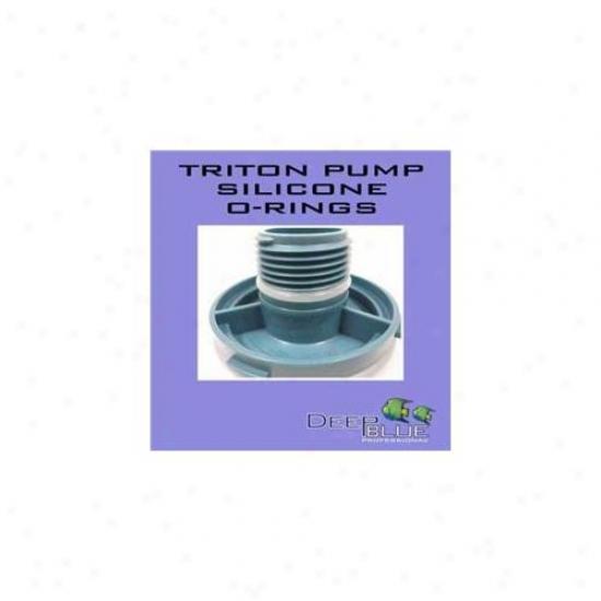 Deep Livid Professional Adb40020 Triton Pump Cober O Ring