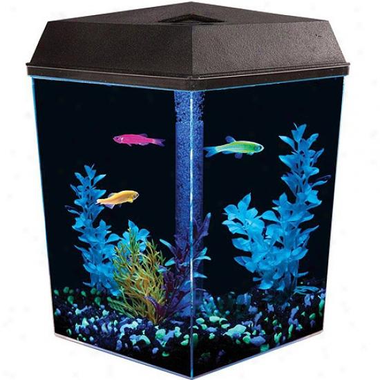 Glofish 1 Gallon Aquarium Kit