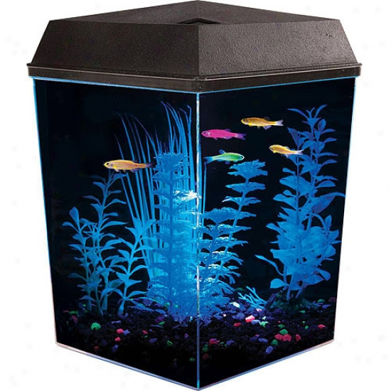 Glofish 2.5 Gallon Aquarium Ki
