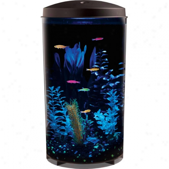 Glofish Aquarium Kit-6 Gallons