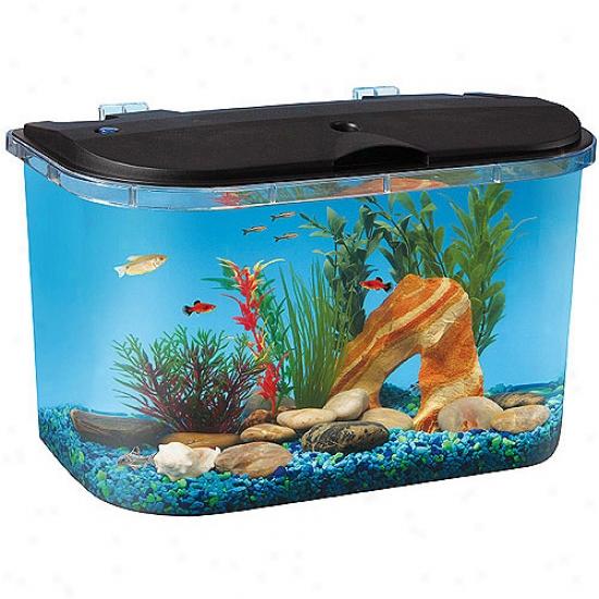 Hawkeye 5 Gallon Startr Aquarium Kit With Led Lighting