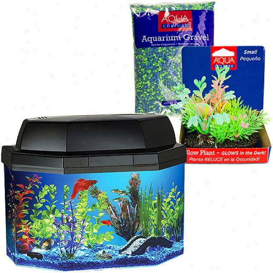 Hawkeye Aquarium 5 Gallon With Gravel And Decor-buy Together And Save