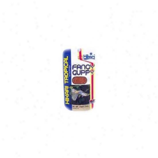 Hikari Sales Fanyc Guppy . 77 Ounces - 22102