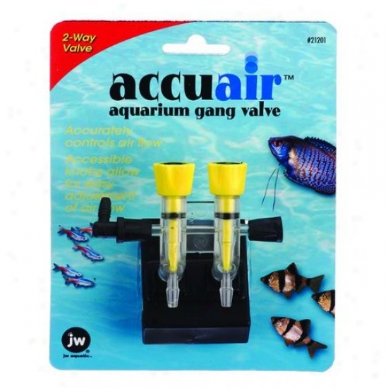 Jw 0421201/21201 Accuair 2-way Gang Valve