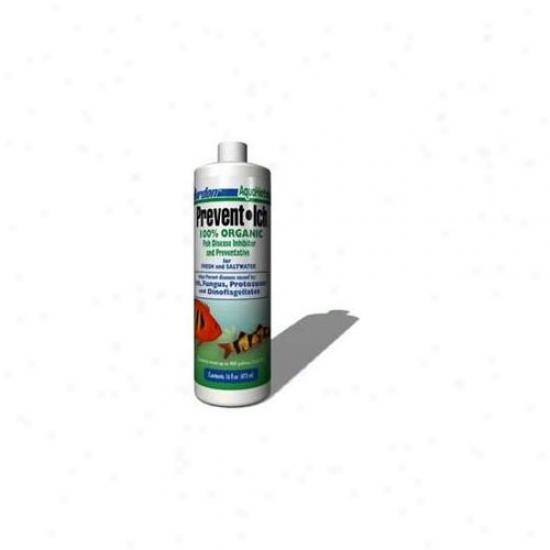 Kordon/oasis (novalek) Akd39556 Prevent Icu