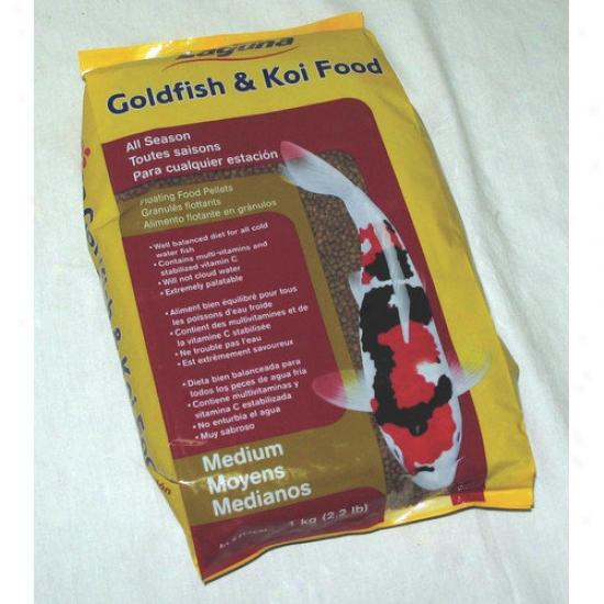 Laguna Waterworks Goldfish And Koi Food Medium