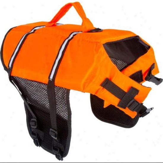Large Orange Dog Float Life Preserver Jacket