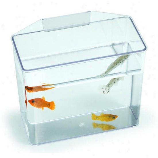Lees Aquarium & Pet Aquarium Specimen Container